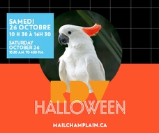 Mail Champlain RDV Halloween Fin 27 Oct 2019
